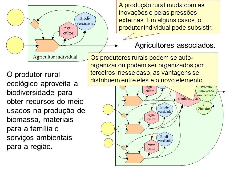 Agricultura individual. Agricultores associados. O produtor rural ecológico aproveita a biodiversidade para obter recursos do meio usados na produção