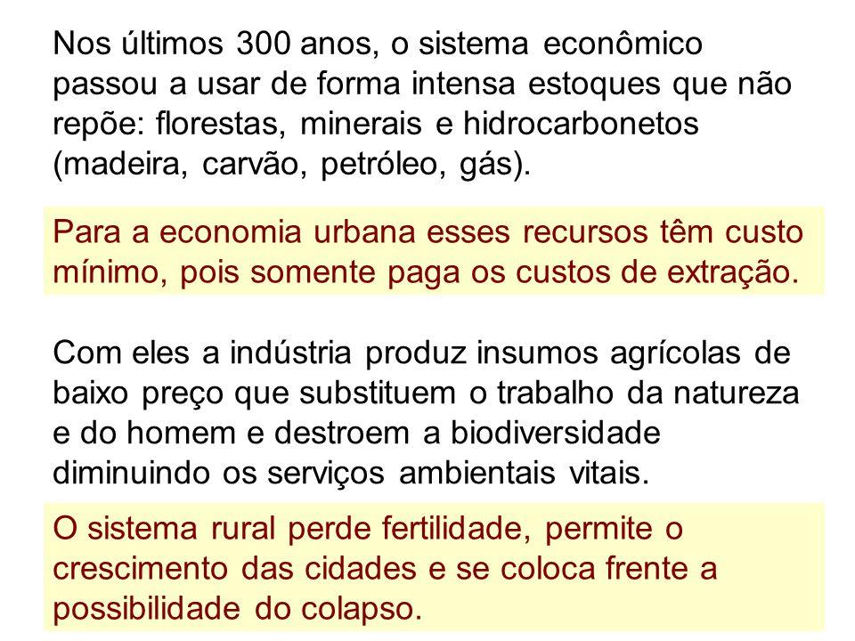 Nos últimos 300 anos, o sistema econômico passou a usar de forma intensa estoques que não repõe: florestas, minerais e hidrocarbonetos (madeira, carvã
