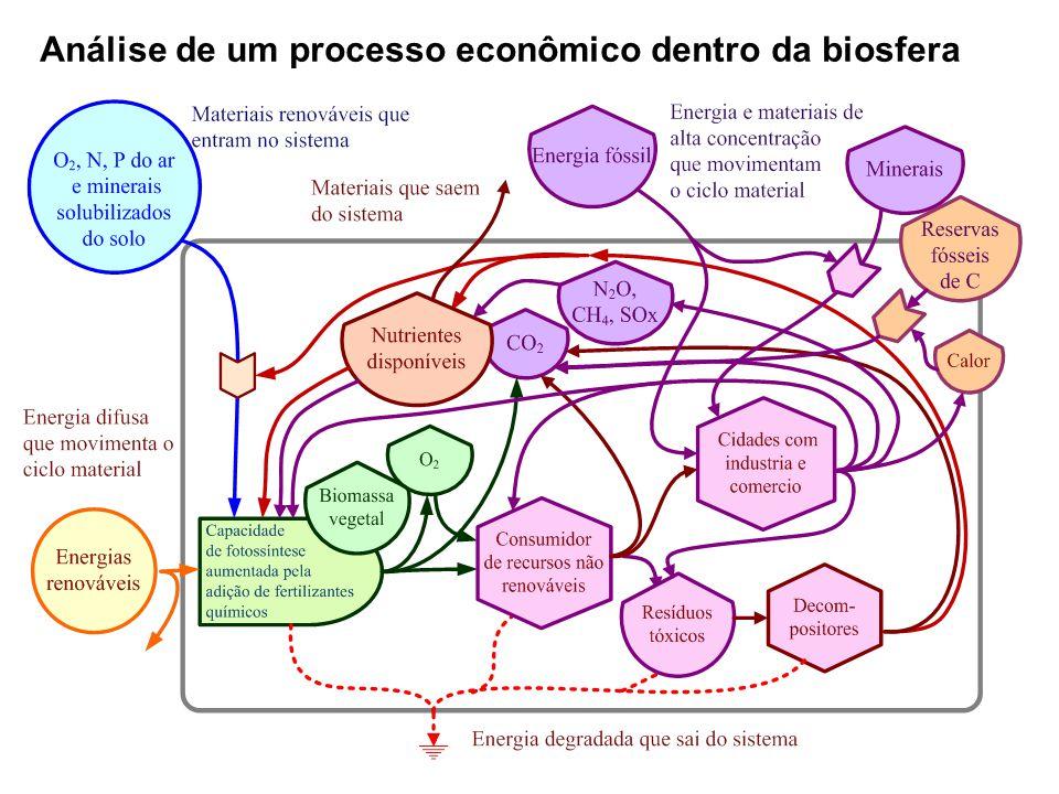 Análise de um processo econômico dentro da biosfera