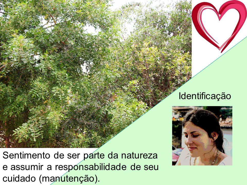 Sentimento de ser parte da natureza e assumir a responsabilidade de seu cuidado (manutenção). Identificação