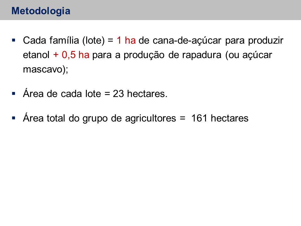  Cada família (lote) = 1 ha de cana-de-açúcar para produzir etanol + 0,5 ha para a produção de rapadura (ou açúcar mascavo);  Área de cada lote = 23 hectares.