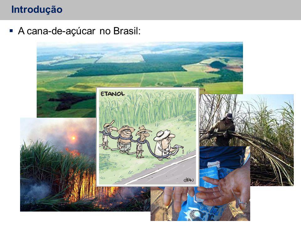 Introdução  A cana-de-açúcar no Brasil: