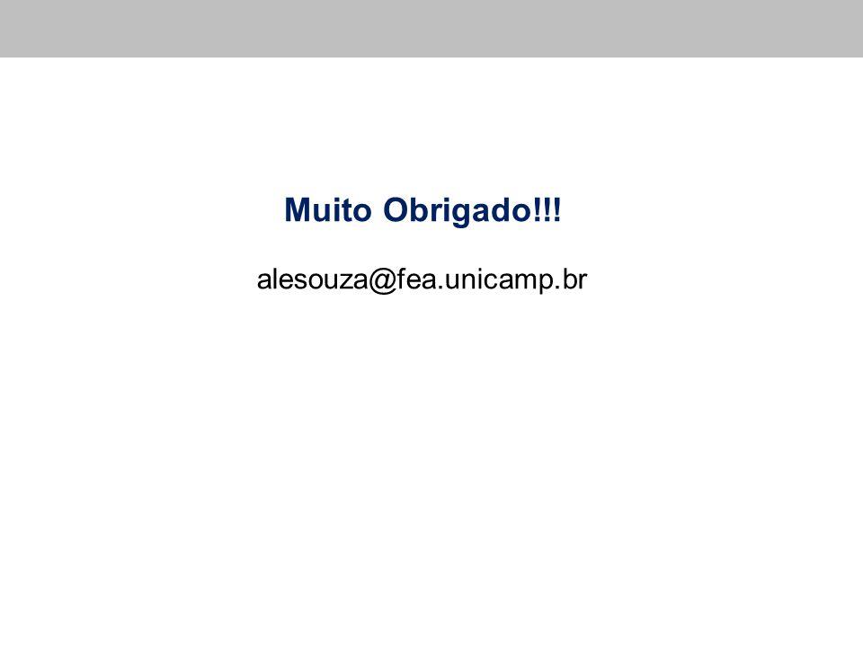 Muito Obrigado!!! alesouza@fea.unicamp.br