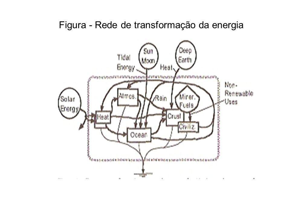 Figura - Rede de transformação da energia