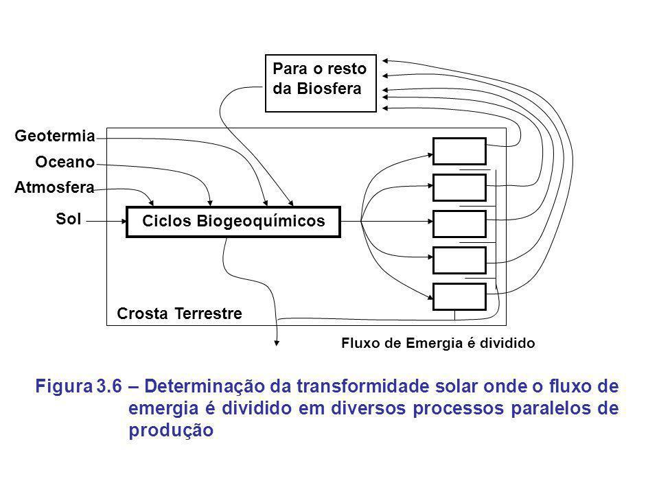 Ciclos Biogeoquímicos Sol Atmosfera Oceano Geotermia Para o resto da Biosfera Crosta Terrestre Fluxo de Emergia é dividido – Determinação da transform