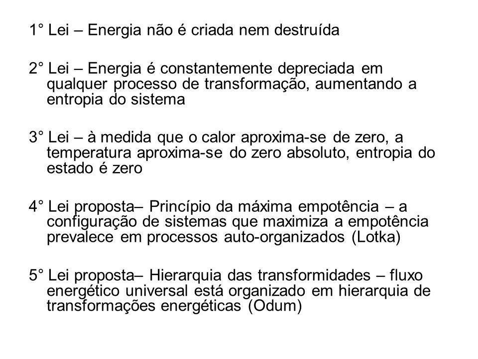 1° Lei – Energia não é criada nem destruída 2° Lei – Energia é constantemente depreciada em qualquer processo de transformação, aumentando a entropia