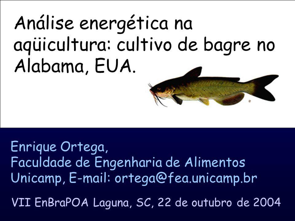 Análise energética na aqüicultura: cultivo de bagre no Alabama, EUA.