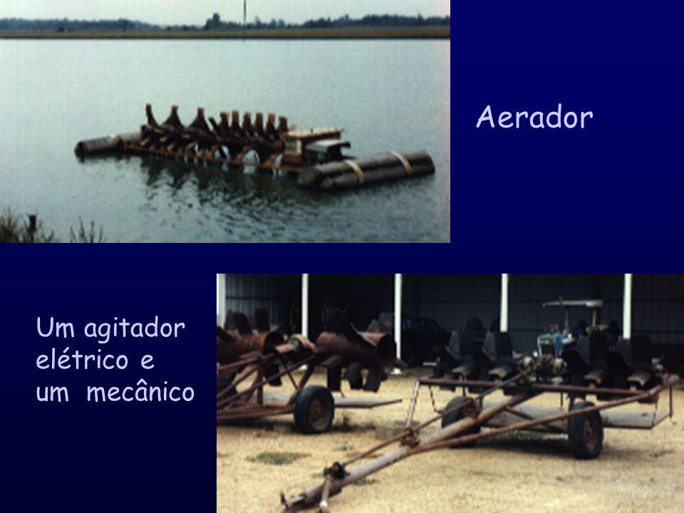 Viveiros de produção de bagre Tubo de drenagem do excedente de água