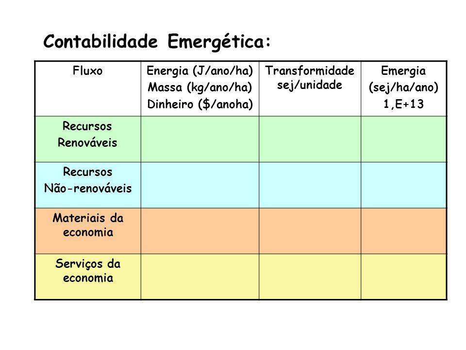 DIAGRAMA EMERGÉTICO