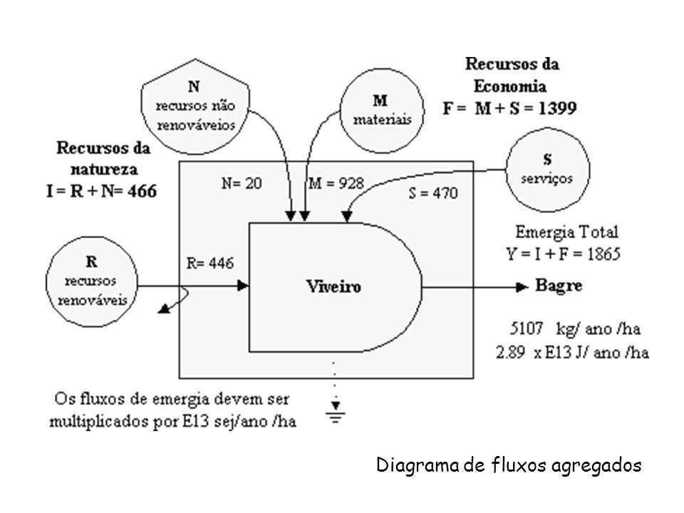 R = 466,0 N = 0,0 I = 466,0 Fluxos emergéticos agregados (vezes 10 16 ) M = 755,5 S = 182,5 F = 938,0 Y = 1404,0