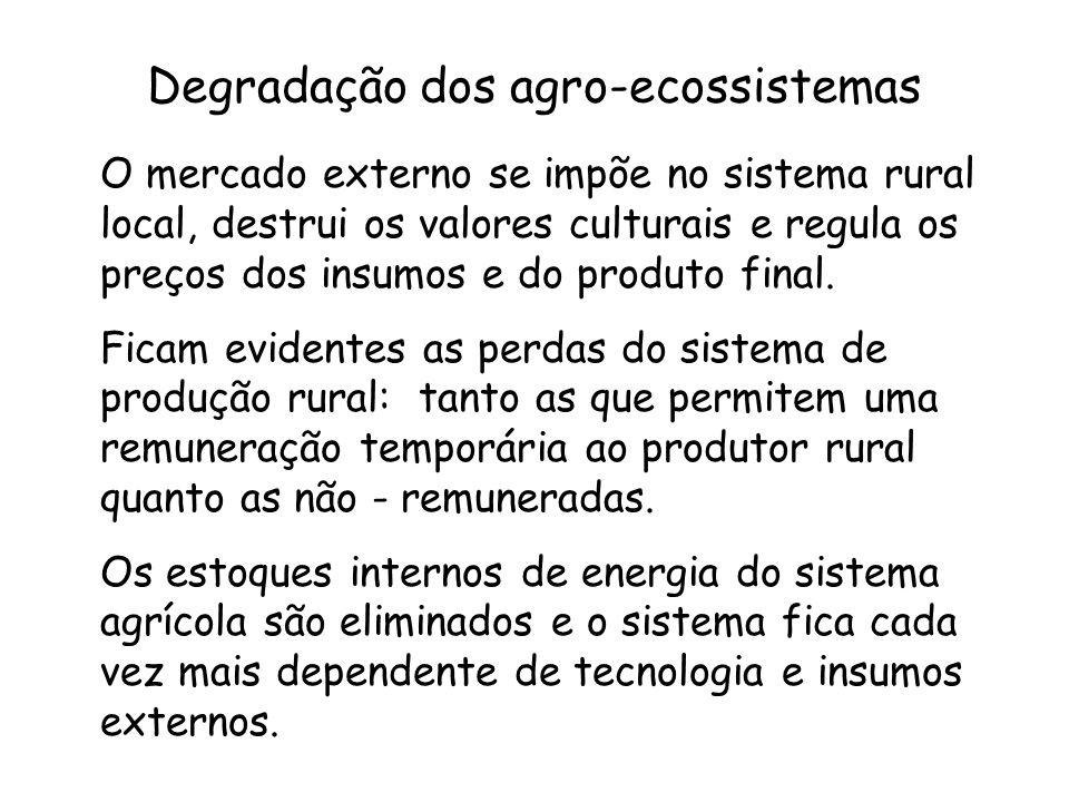Degradação dos agro-ecossistemas O mercado externo se impõe no sistema rural local, destrui os valores culturais e regula os preços dos insumos e do p