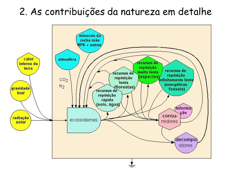 Contribuições da natureza aos ecossistemas Alguns recursos são de fluxo contínuo (energia solar e lunar, calor interno da Terra).