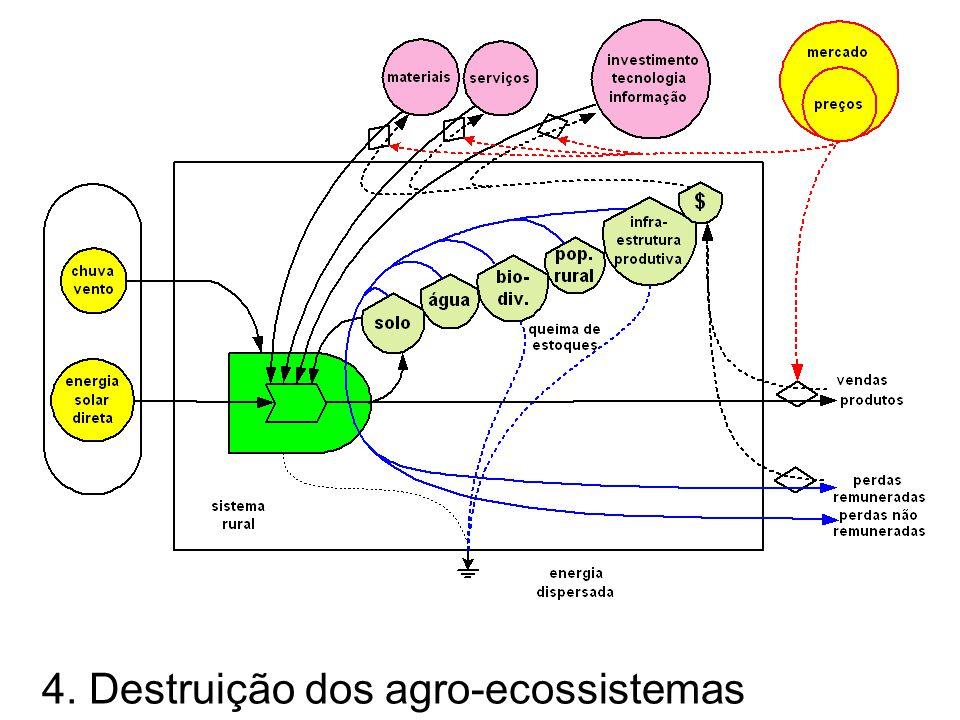 Degradação dos agro-ecossistemas O mercado externo se impõe no sistema rural local, destrui os valores culturais e regula os preços dos insumos e do produto final.