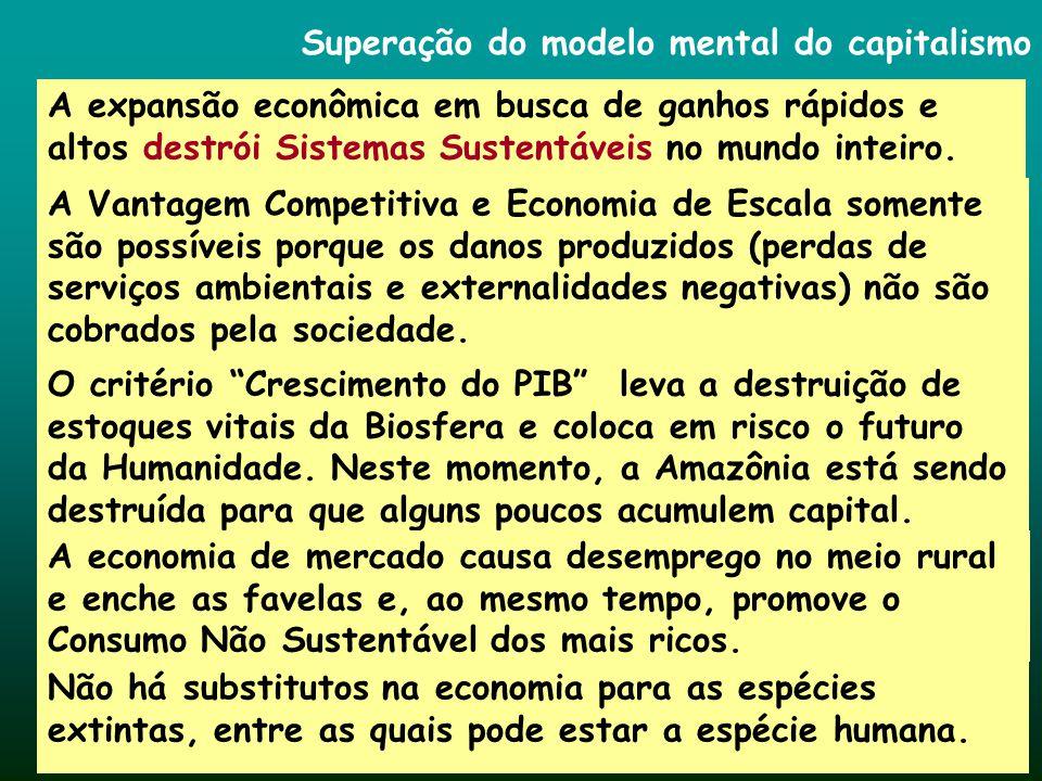 Superação do modelo mental do capitalismo A expansão econômica em busca de ganhos rápidos e altos destrói Sistemas Sustentáveis no mundo inteiro. A Va