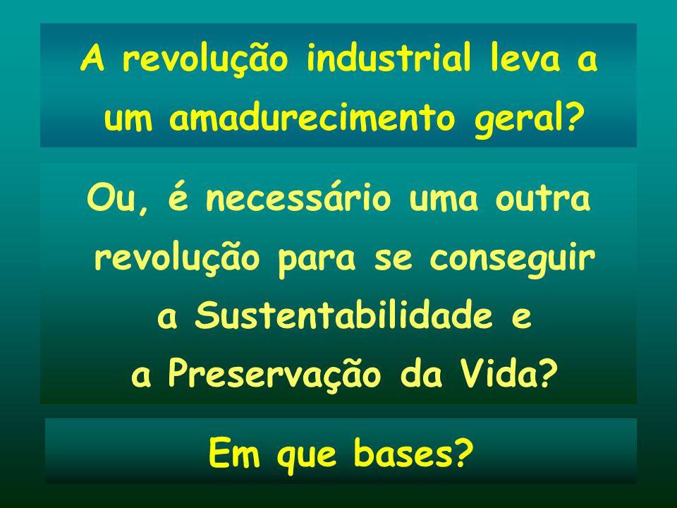 A revolução industrial leva a um amadurecimento geral? Ou, é necessário uma outra revolução para se conseguir a Sustentabilidade e a Preservação da Vi