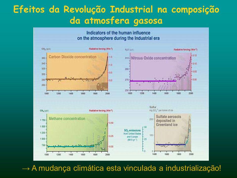 → A mudança climática esta vinculada a industrialização! Efeitos da Revolução Industrial na composição da atmosfera gasosa