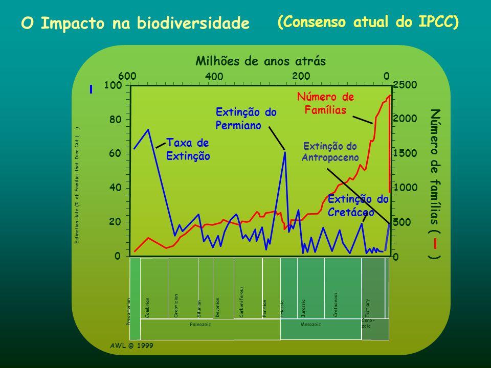 O Impacto na biodiversidade (Consenso atual do IPCC) AWL © 1999 0 600 400 200 0 Milhões de anos atrás Precambrian Cambrian Ordovician Silurian Devonia