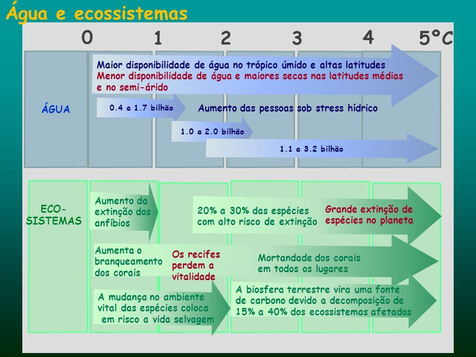 Água e ecossistemas ÁGUA 0.4 a 1.7 bilhão 1.0 a 2.0 bilhão 1.1 a 3.2 bilhão Maior disponibilidade de água no trópico úmido e altas latitudes Menor dis