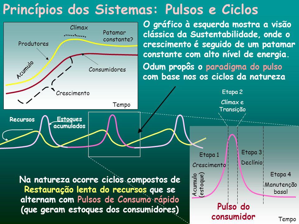 Produtores Consumidores Crescimento Clímax Tempo Princípios dos Sistemas:Pulsos e Ciclos Tempo Acumulo (estoque) Etapa 1 Crescimento Etapa 3 Declínio