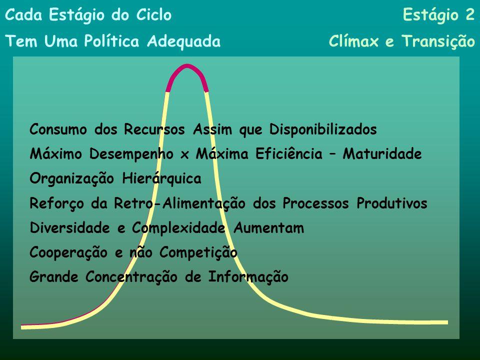 Consumo dos Recursos Assim que Disponibilizados Máximo Desempenho x Máxima Eficiência – Maturidade Organização Hierárquica Reforço da Retro-Alimentaçã