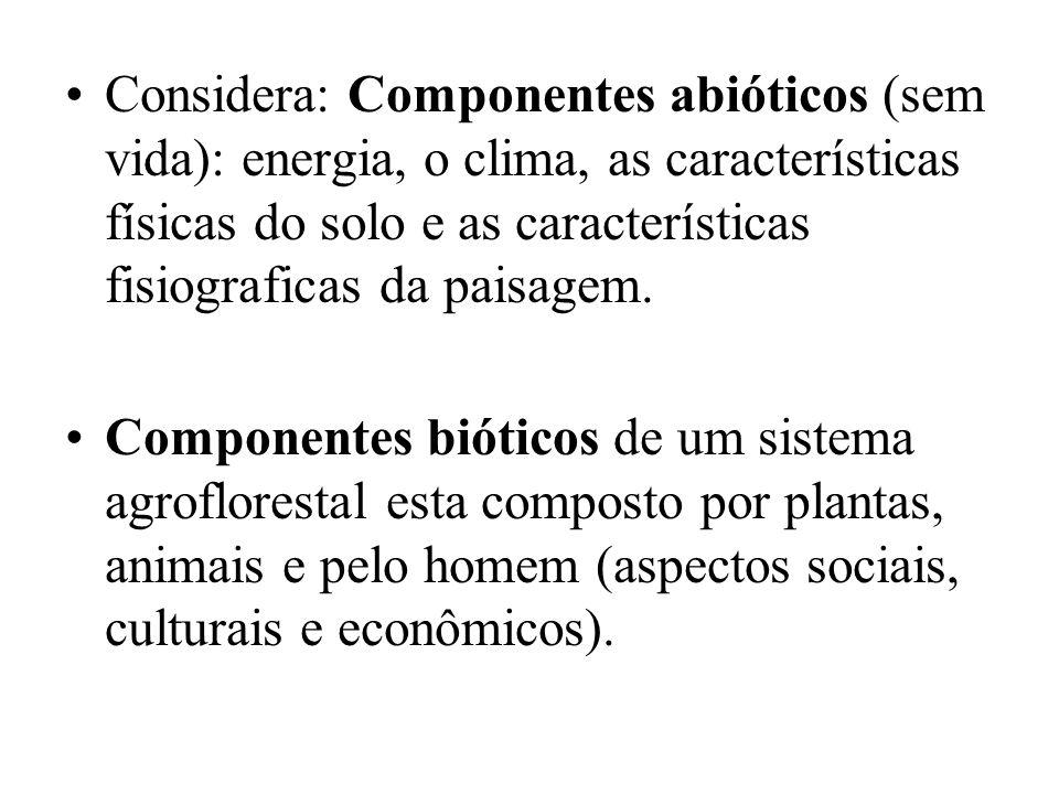 Considera: Componentes abióticos (sem vida): energia, o clima, as características físicas do solo e as características fisiograficas da paisagem. Comp