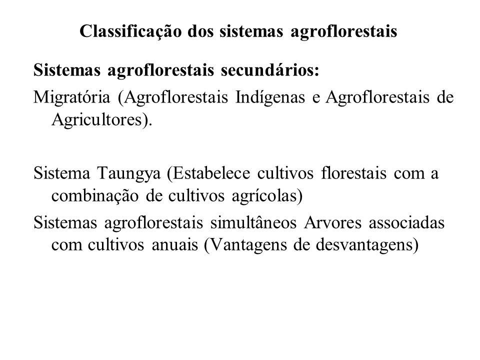 Classificação dos sistemas agroflorestais Sistemas agroflorestais secundários: Migratória (Agroflorestais Indígenas e Agroflorestais de Agricultores).