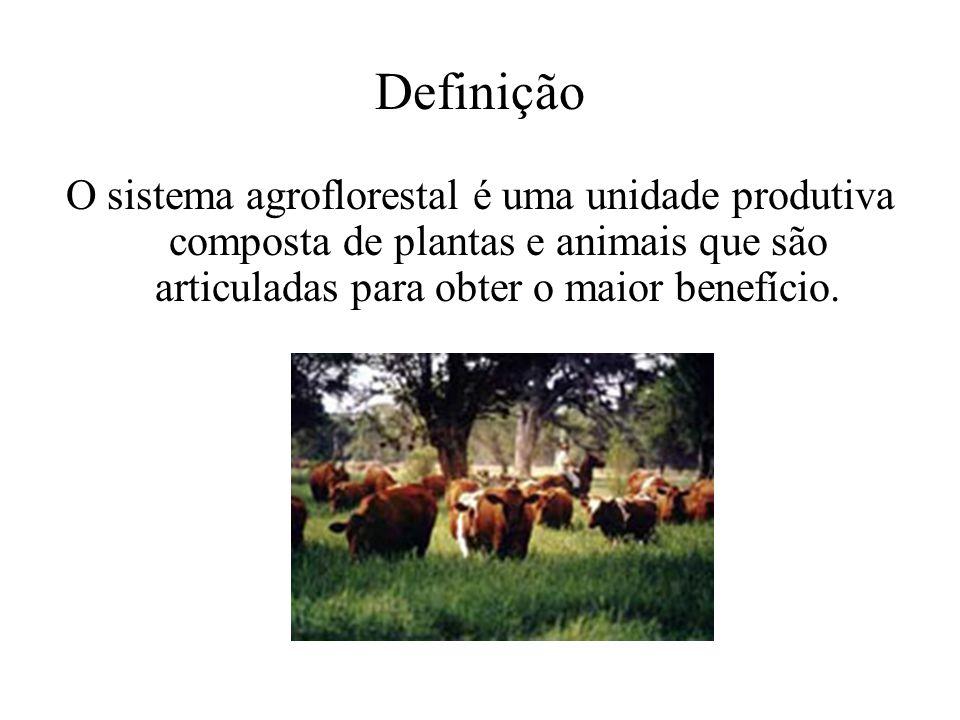 Definição O sistema agroflorestal é uma unidade produtiva composta de plantas e animais que são articuladas para obter o maior benefício.