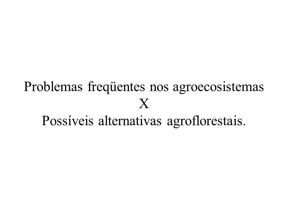 Problemas freqüentes nos agroecosistemas X Possíveis alternativas agroflorestais.