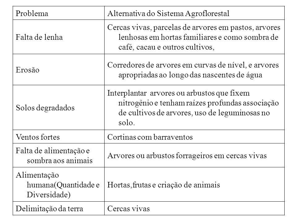 ProblemaAlternativa do Sistema Agroflorestal Falta de lenha Cercas vivas, parcelas de arvores em pastos, arvores lenhosas em hortas familiares e como