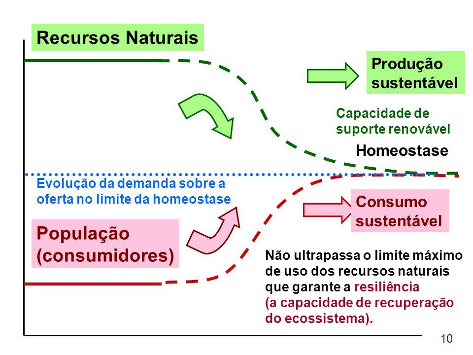 10 Recursos Naturais População (consumidores) Produção sustentável Capacidade de suporte renovável Não ultrapassa o limite máximo de uso dos recursos