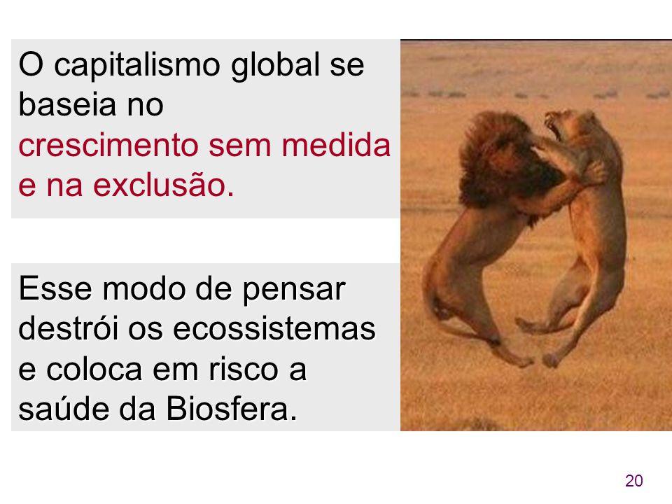 20 O capitalismo global se baseia no crescimento sem medida e na exclusão. Esse modo de pensar destrói os ecossistemas e coloca em risco a saúde da Bi