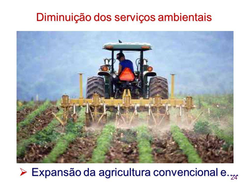 24 Diminuição dos serviços ambientais  Expansão da agricultura convencional e....