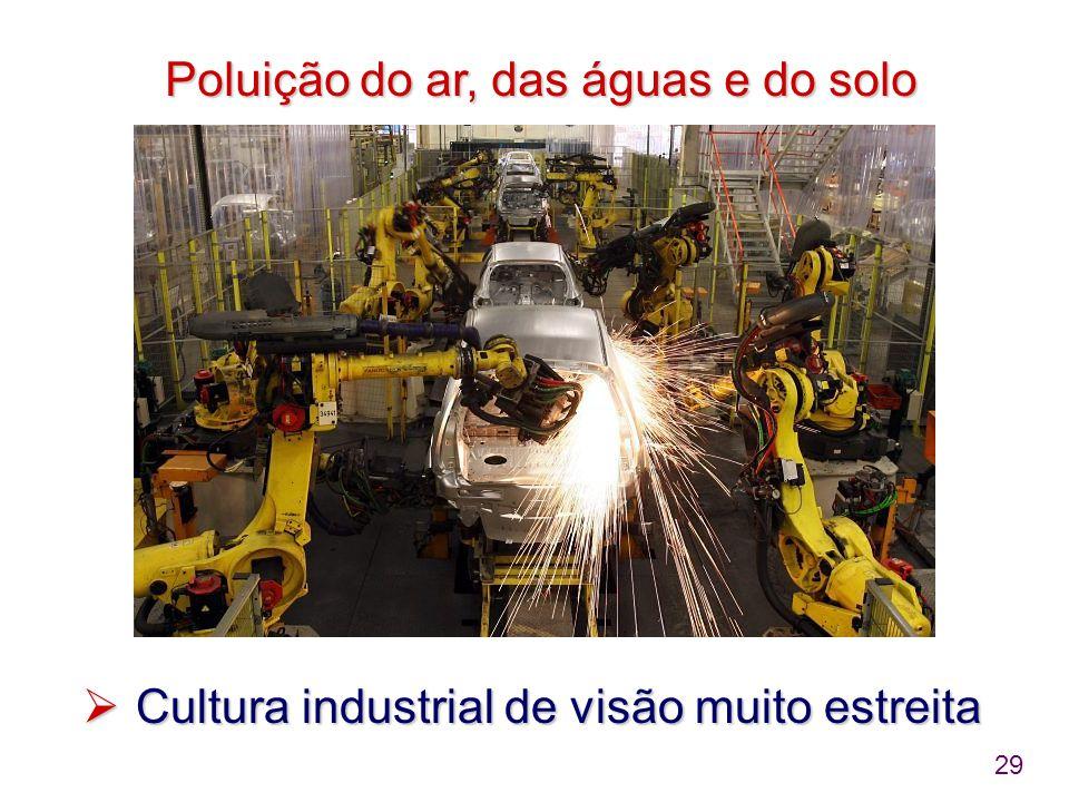 29 Poluição do ar, das águas e do solo Poluição do ar, das águas e do solo  Cultura industrial de visão muito estreita
