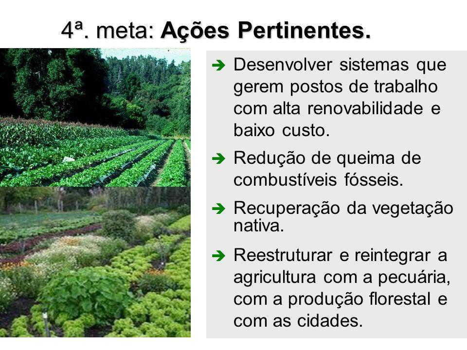 41 4ª. meta: Ações Pertinentes.  Redução de queima de combustíveis fósseis.  Recuperação da vegetação nativa.  Reestruturar e reintegrar a agricult
