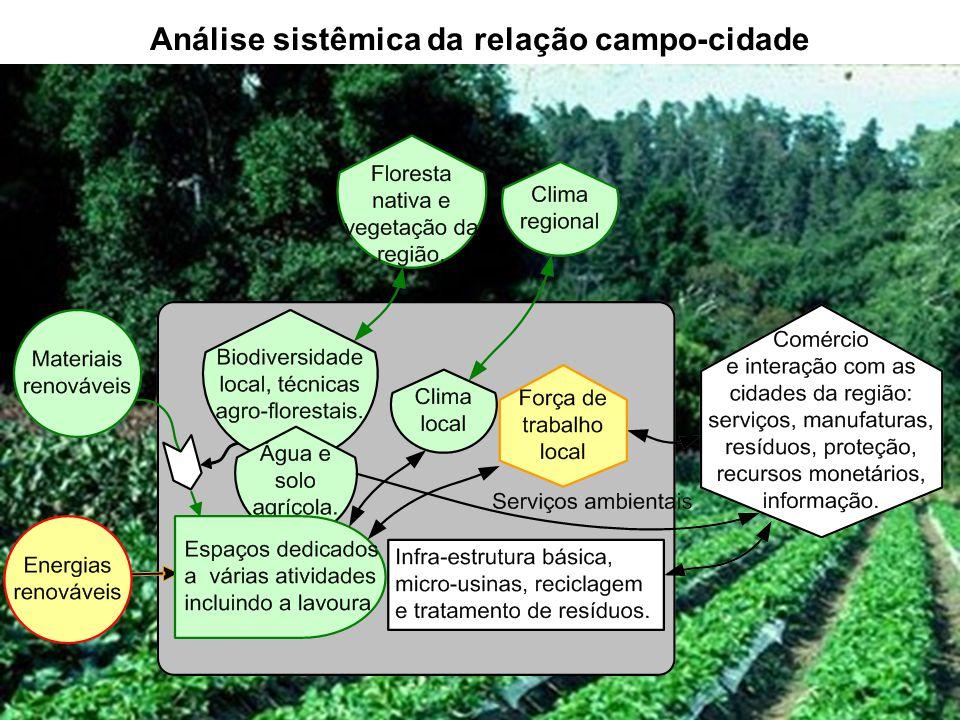 43 Análise sistêmica da relação campo-cidade