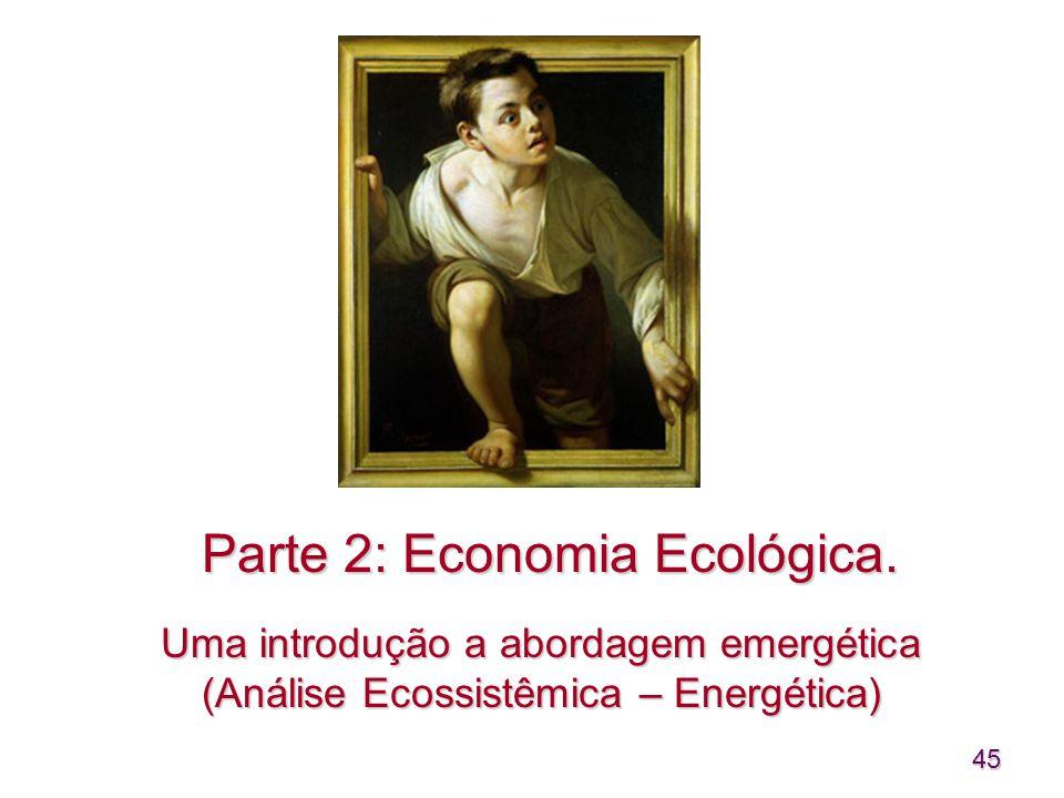 45 Parte 2: Economia Ecológica. Uma introdução a abordagem emergética (Análise Ecossistêmica – Energética)