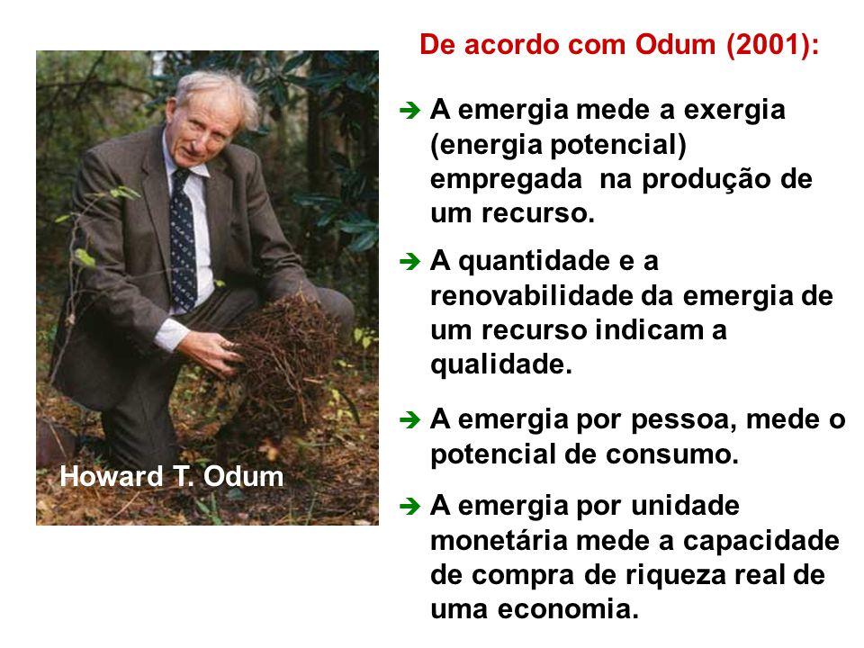52 De acordo com Odum (2001):  A emergia mede a exergia (energia potencial) empregada na produção de um recurso.  A quantidade e a renovabilidade da