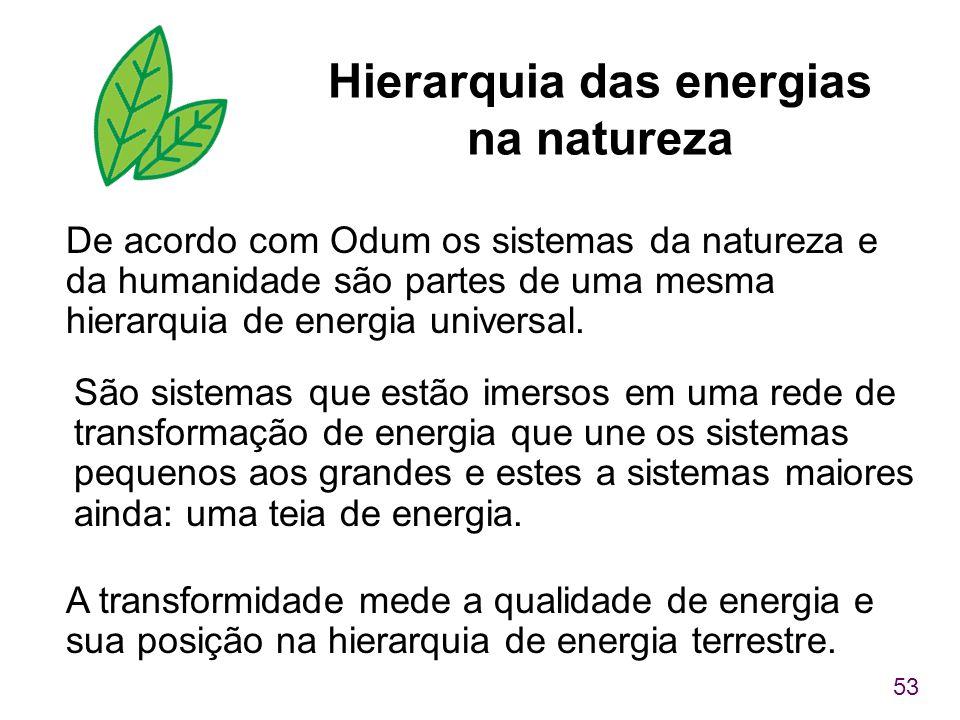53 Hierarquia das energias na natureza De acordo com Odum os sistemas da natureza e da humanidade são partes de uma mesma hierarquia de energia univer