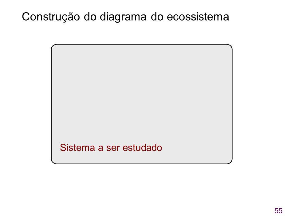 55 Sistema a ser estudado Construção do diagrama do ecossistema