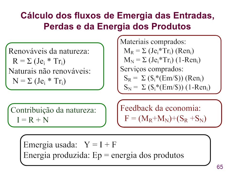 65 Cálculo dos fluxos de Emergia das Entradas, Perdas e da Energia dos Produtos