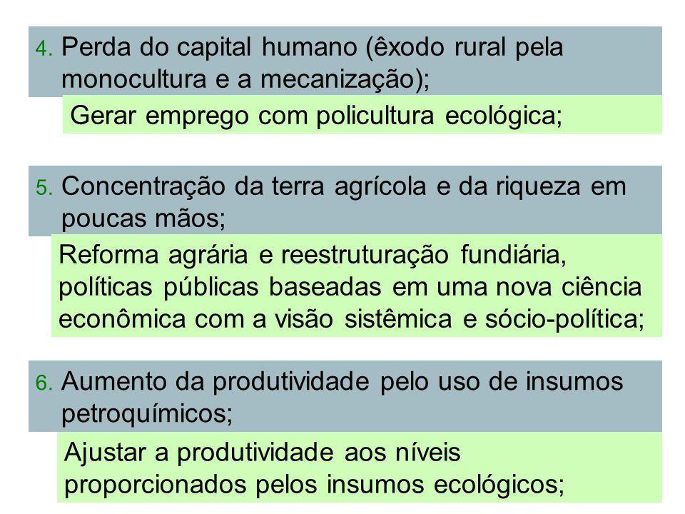 80 4. Perda do capital humano (êxodo rural pela monocultura e a mecanização); Gerar emprego com policultura ecológica; 5. Concentração da terra agríco
