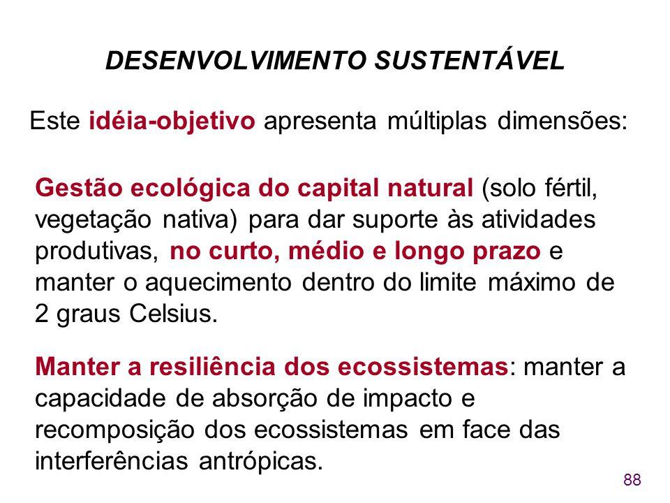 88 DESENVOLVIMENTO SUSTENTÁVEL Este idéia-objetivo apresenta múltiplas dimensões: Gestão ecológica do capital natural (solo fértil, vegetação nativa)