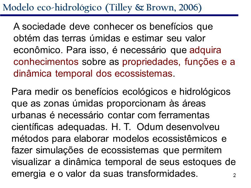 2 Modelo eco-hidrológico (Tilley & Brown, 2006) A sociedade deve conhecer os benefícios que obtém das terras úmidas e estimar seu valor econômico.