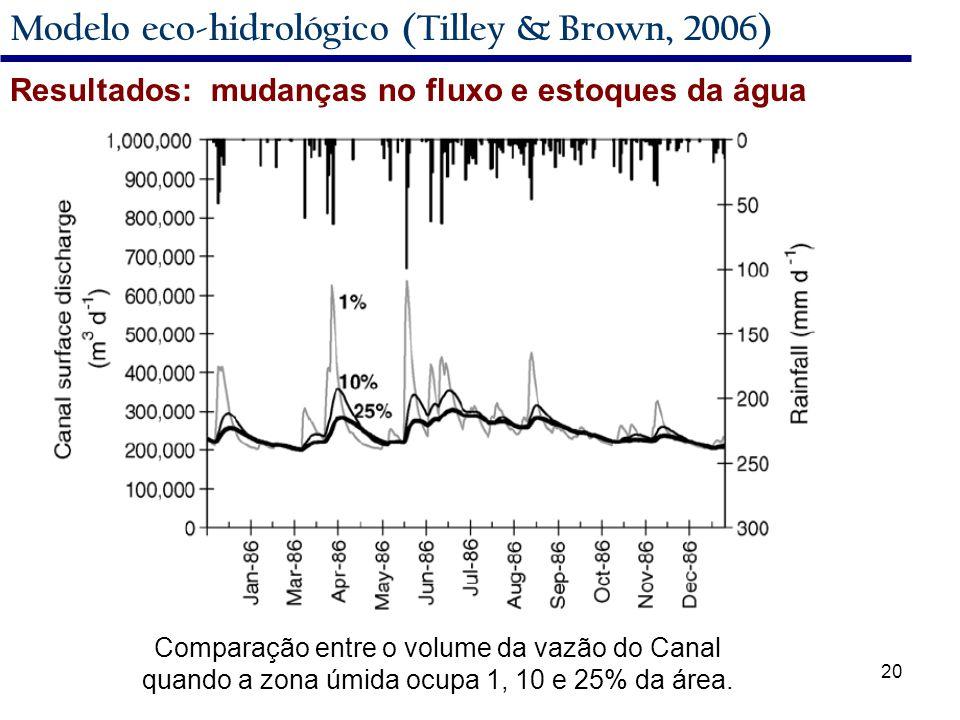 20 Modelo eco-hidrológico (Tilley & Brown, 2006) Resultados: mudanças no fluxo e estoques da água Comparação entre o volume da vazão do Canal quando a zona úmida ocupa 1, 10 e 25% da área.