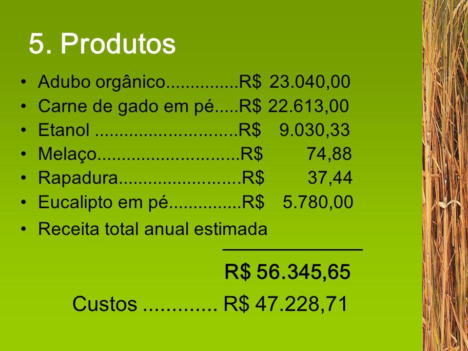 5. Produtos Adubo orgânico...............R$ 23.040,00 Carne de gado em pé.....R$ 22.613,00 Etanol.............................R$ 9.030,33 Melaço......