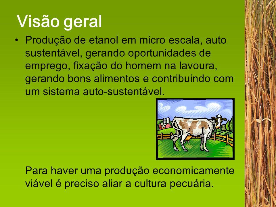 7.Balanço Econômico Produção de 50 litros/dia Vendas...............