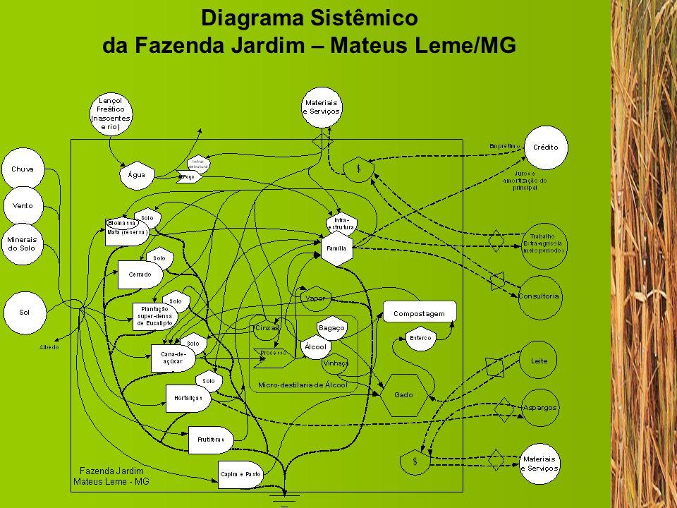 1.Infra-estrutura 50 hectares de terra, das quais 2 a 4 hectares para cana-de-açúcar.