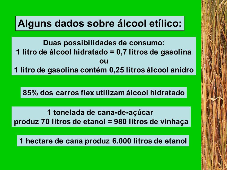 Quanto maior o índice, maior a pressão causada ao eco-sistema pelos processos produtivos.