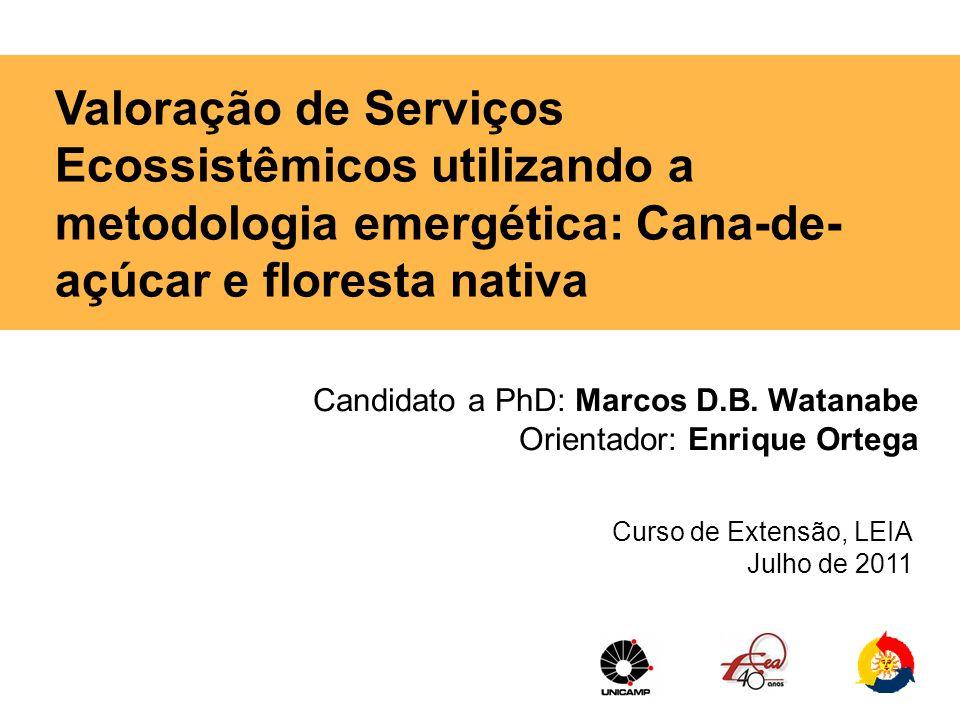 Candidato a PhD: Marcos D.B. Watanabe Orientador: Enrique Ortega Curso de Extensão, LEIA Julho de 2011 Valoração de Serviços Ecossistêmicos utilizando