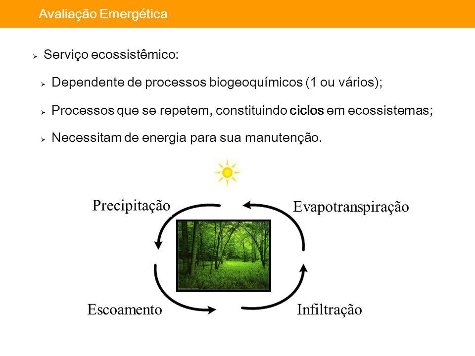 Importância da avaliação: Avaliação Emergética  Serviço ecossistêmico:  Dependente de processos biogeoquímicos (1 ou vários);  Processos que se rep